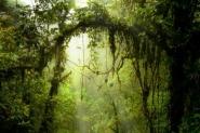 Costa Rica - Praias e Montanhas