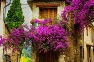 Cruzeiro Fluvial Cores da Provença