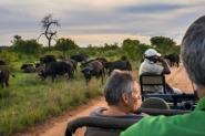 Skata Kruger & Vinhos - África do Sul