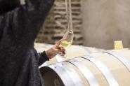 Pelos Vinhos, Gastronomia e Arqueologia da Herdade do Esporão